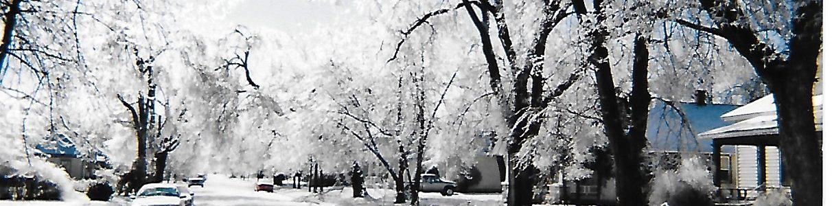 Ice & Snow Winter Storm 2021 Disaster Claims